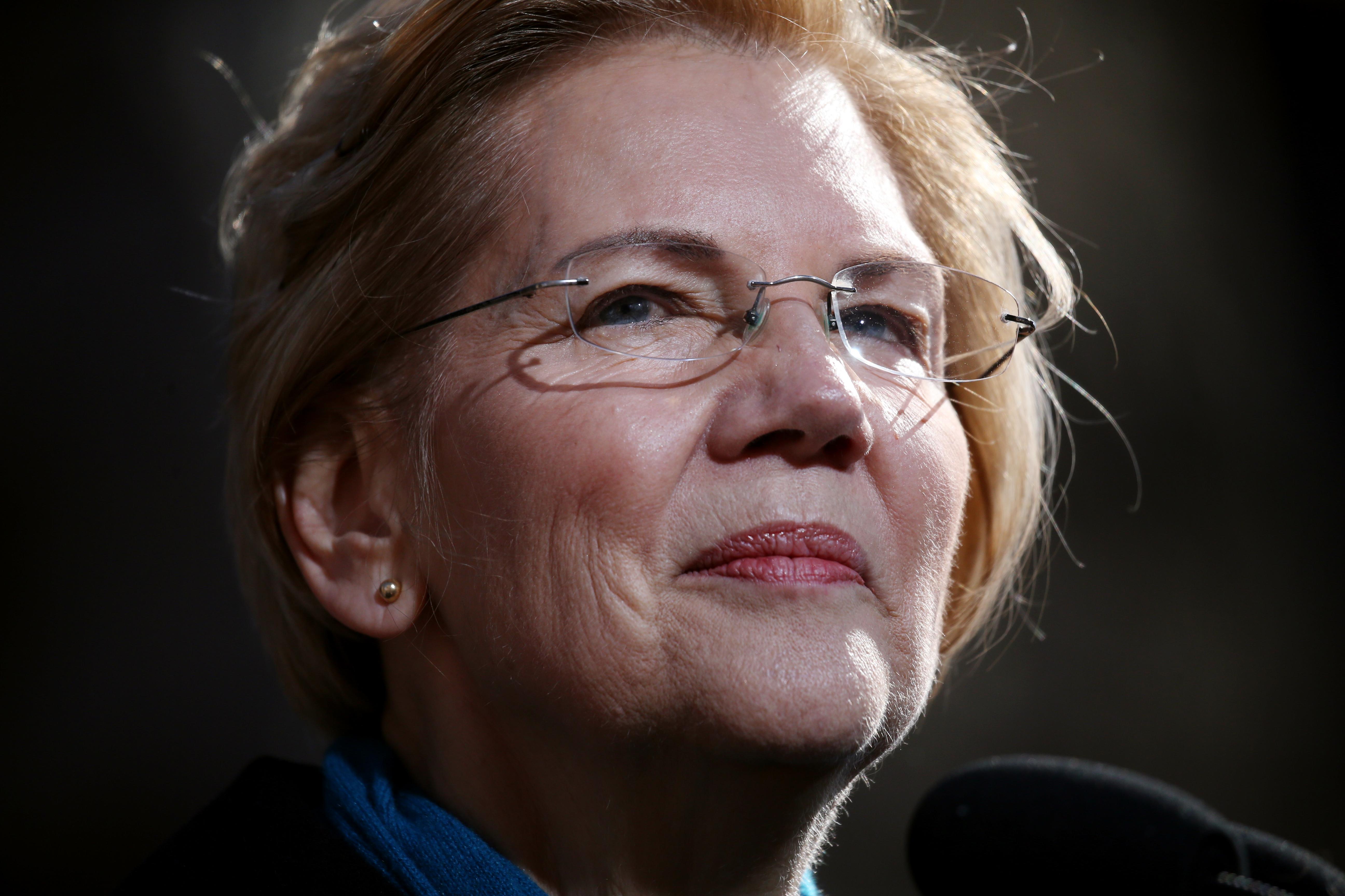 What, no roses from Warren? A socialist critiques her speech