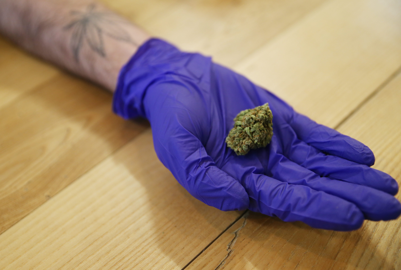 Massachusetts marijuana shopping for rookies: Answers to