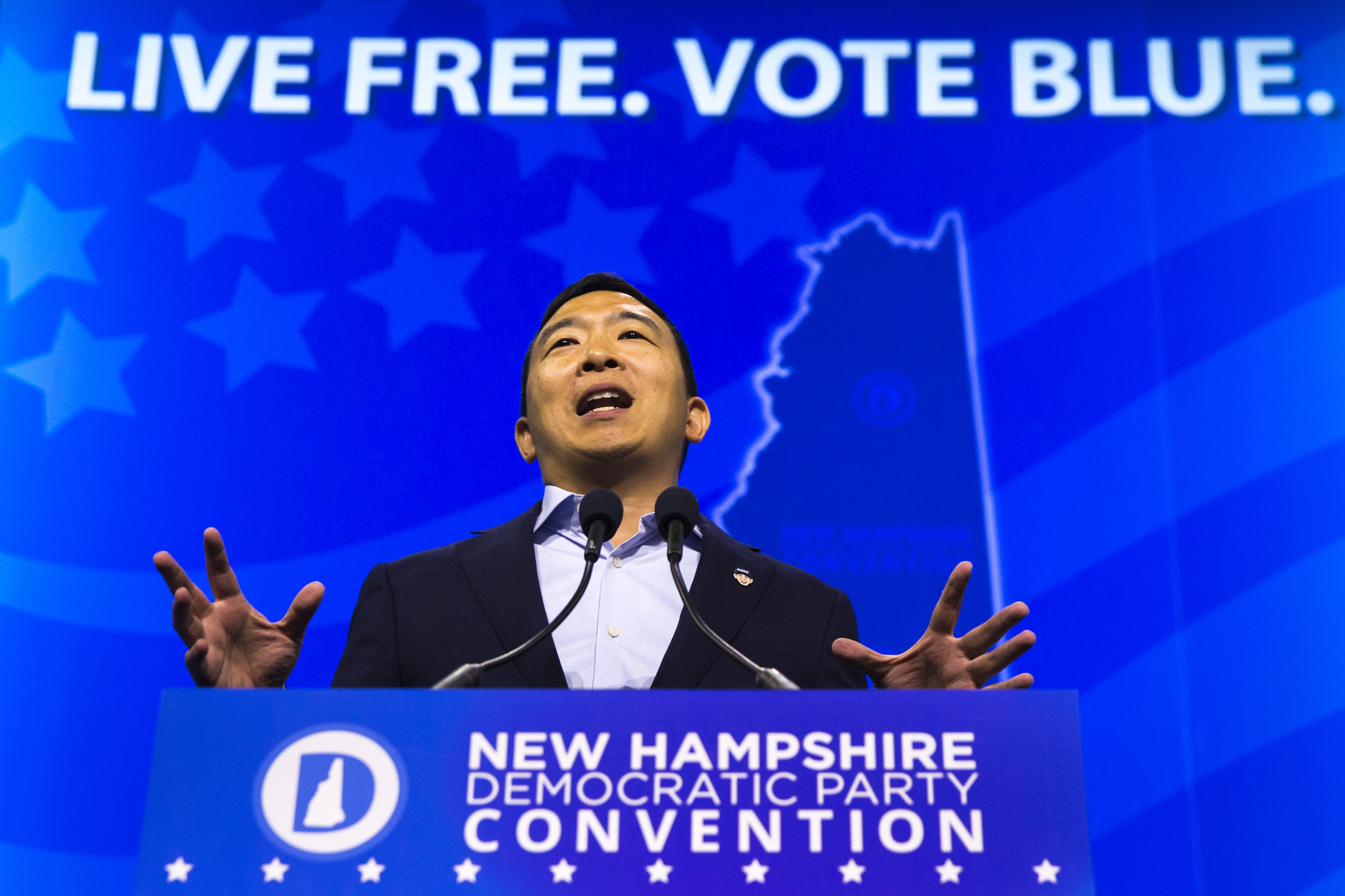 What does the lasting power of Andrew Yang tell us about politics today?
