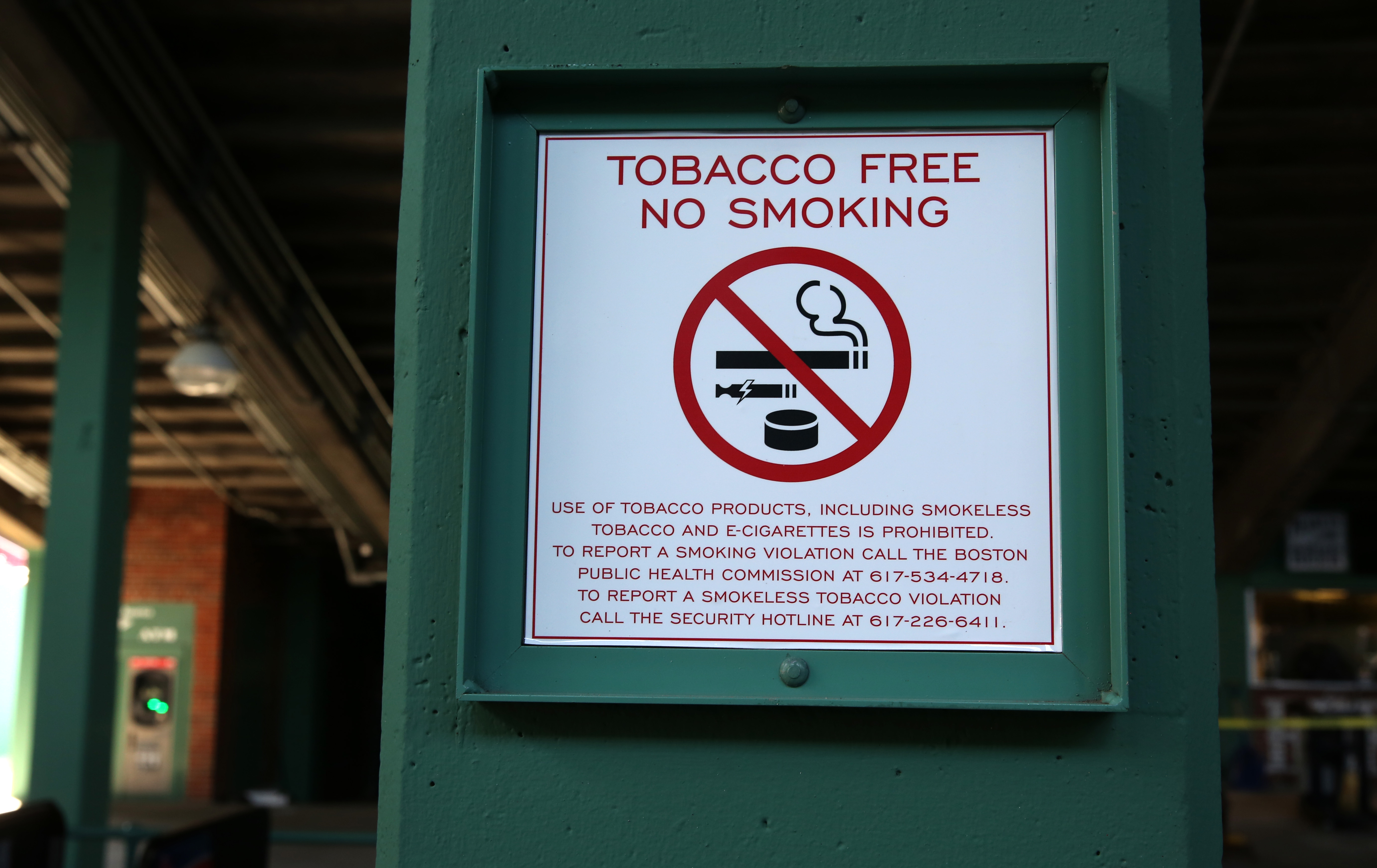 Play Ball! Just don't chew tobacco at Fenway - The Boston Globe