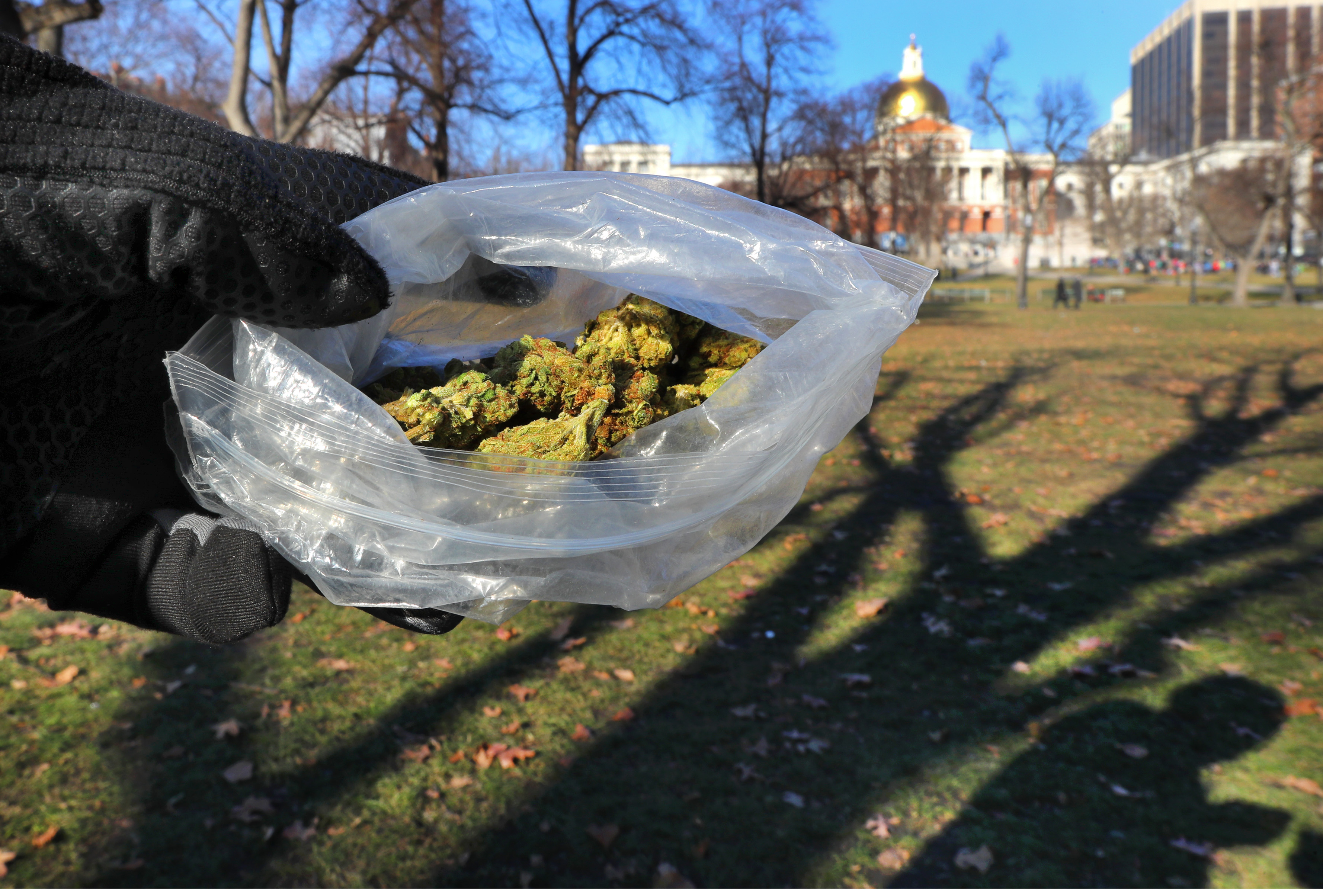 $325 plastic bags — with free weed 'gift' — advertised on